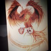 phoenix color tattoo design