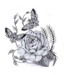 170315 papillon