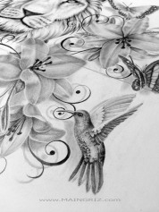 171018 colibri vogel - Ivonne