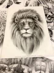 Lion 2 - copie